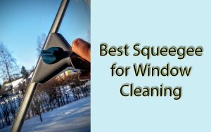 Best Squeegee for Window Cleaning